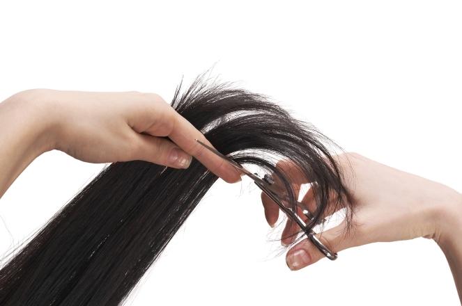 bigstock-hair-stylist-cutting-black-lon-26367524