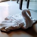 Towel Peacock