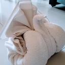 Towel Turkey
